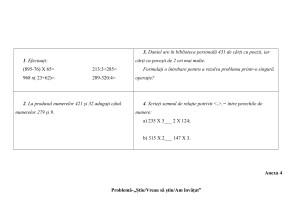 proiect_mate_cls_a_vi_a_ces-4
